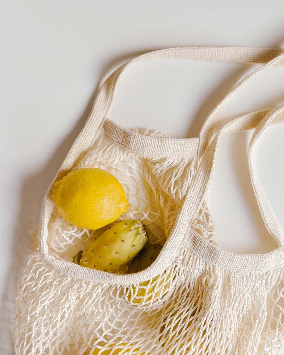 foodcaring bag